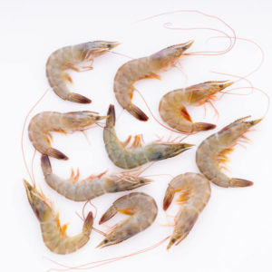 The Upper Scale Frozen Tiger Prawns